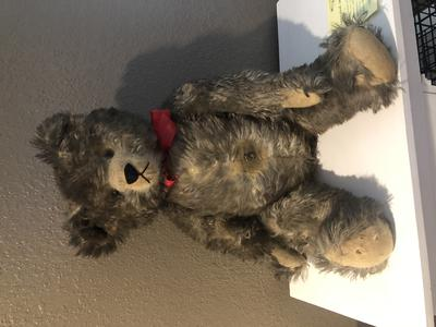 Hermann teddy bear ?
