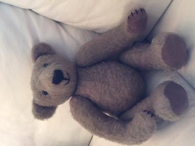 light brown teddy
