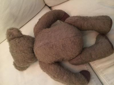 light brown teddy back view