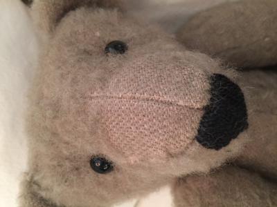 light brown teddy face