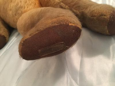 teddy bear foot
