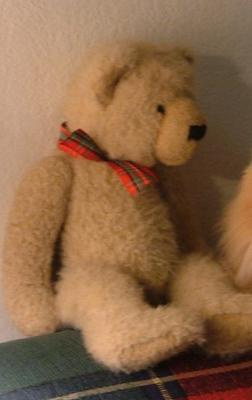 Long Lost Teddy Bear
