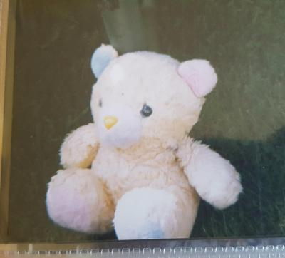 Pink and Blue Teddy Bear