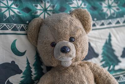 Mishka my teddy bear