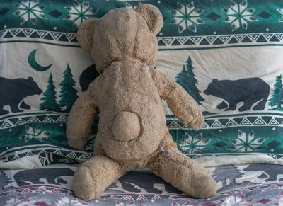 back view of my teddy bear