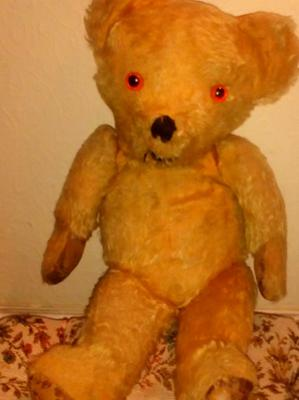 Miss paulovics teddy bear