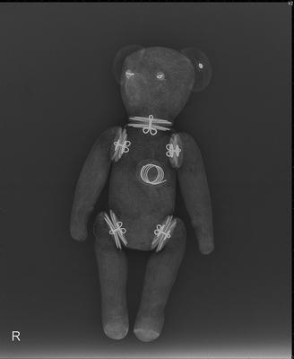 x-ray od teddy bear