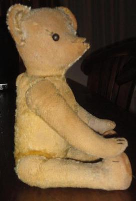 my old bear