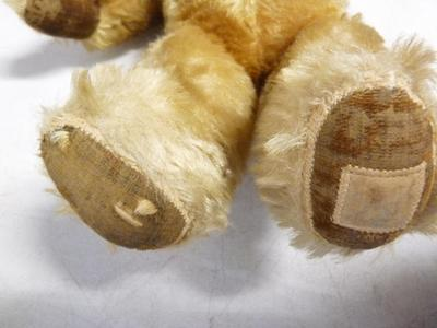 teddy bear paws