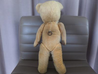 Musical Teddy Bear 1950's back view