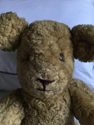 face of 1947 teddy bear