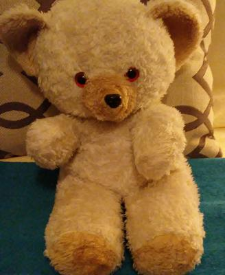 My Lovely Old Teddy