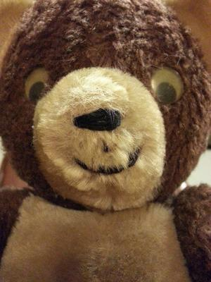 face of teddy bear