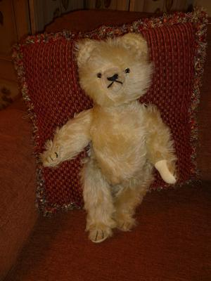 white haired teddy bear