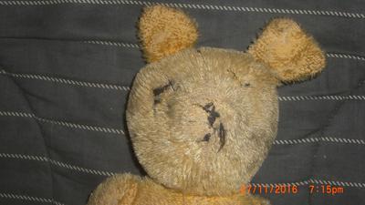 Faceof my Poor Little Teddy Bear