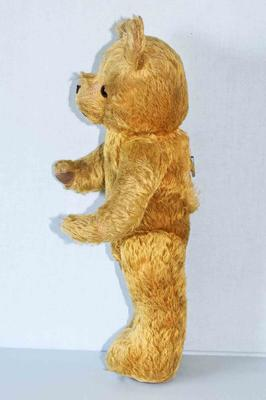 1954 Australian teddy bear