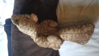 side view of my teddy bear