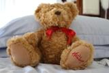 No 2 Hamleys teddy