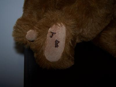 JB bear foot