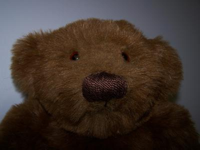 JB bear face