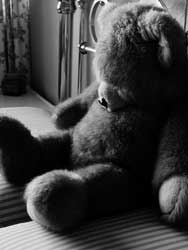 old Teddy Bear picture by N. Camps