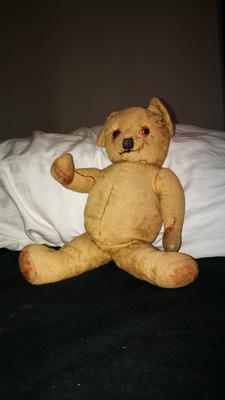 Old Inherited Bear