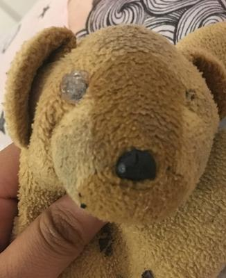 big teddy bear face