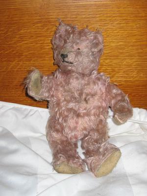 Tan teddy bear