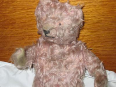 close up of tan teddy bear