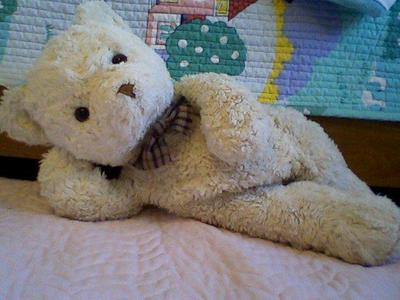 reclining white teddy bear