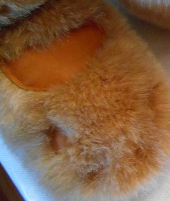 Teddy bear paw