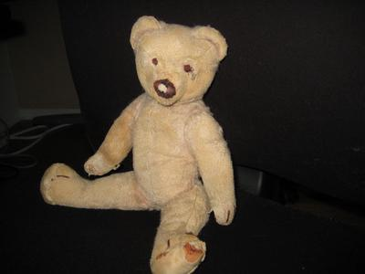 Possible early Chiltern bear