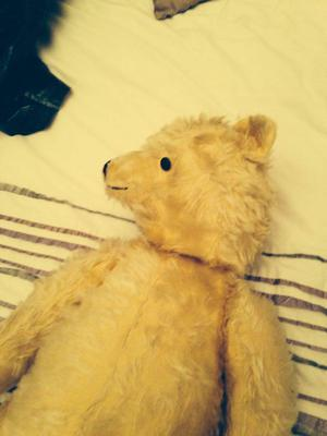 teddy bear with movable head