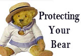 Protecting Your Bear