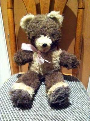 Old brown bear