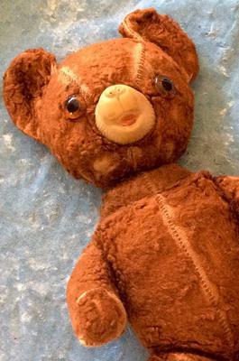 rubber nose bear