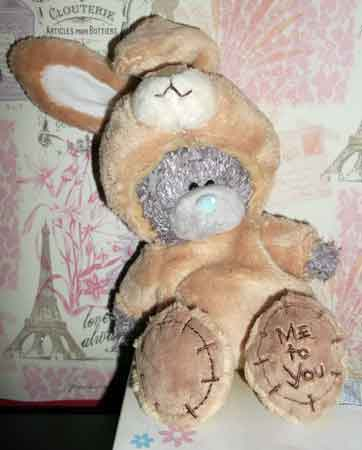 tatty bear bunny costume