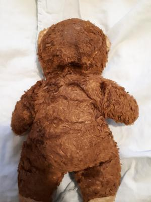 back view of dark brown teddy bear