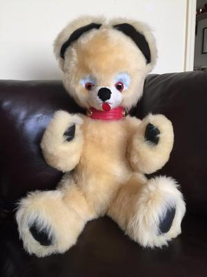 Cream teddy bear with dark paws