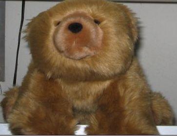 Teddy Bear on all fours