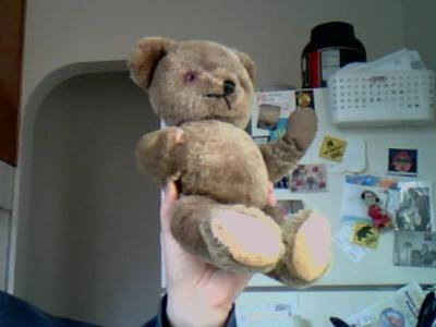 Possibly and early American teddy Bear