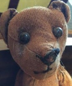 Teddybear in the Wall close up