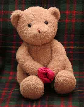 Funny Face Teddy Bear