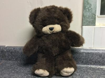 Brown and cream teddy bear