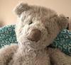 1990 Gund teddy bear ?