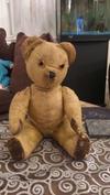 50 Year Old Teddy Bear