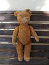 Blind bear front view