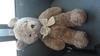 Childhood Teddy