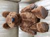 Dark brown growler bear