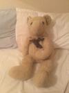 2002 teddy bear